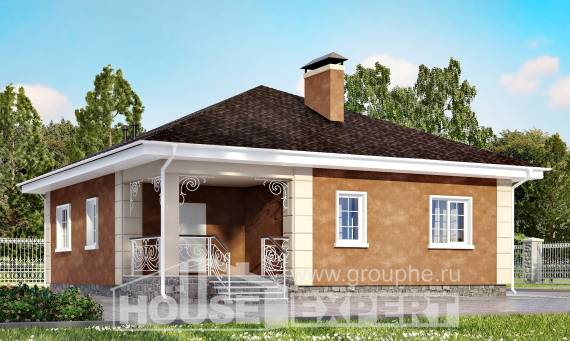 100-001-L One Story House Plans, small House Blueprints, House Expert